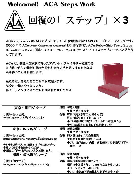 aca3-1.jpg